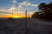 Sunrise through the Fence